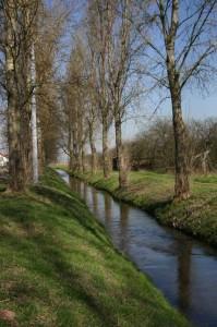 Oosbach IMG 8433-199x300 in Sandweier