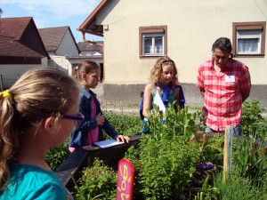 Kommission-der-Schulgarteninitiative-3-800-300x225 in Kräutergarten 2016