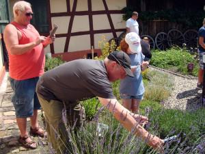 Tag-des-Schulgartens-20 06-35-600-300x225 in Kräuter AG
