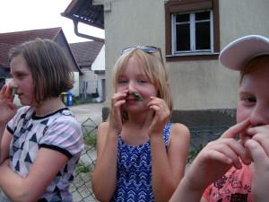 Tag-des-Schulgartens-20 06-71-600-300x225 in Kräuter AG