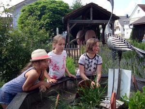 Tag-des-Schulgartens-20 06-85-600-300x225 in Kräuter AG