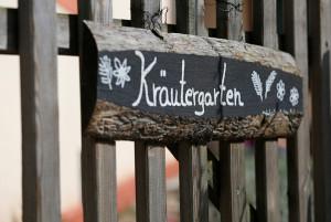 in Kräutergarten 2018